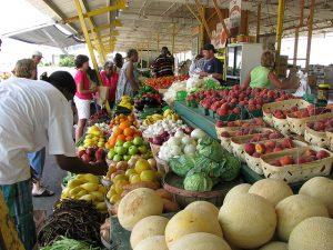 Wayne, PA farmers market