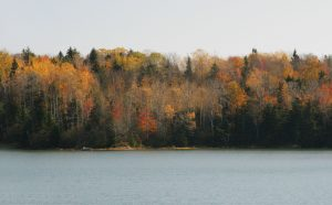 pocono mountains fall foliage
