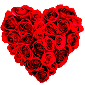 roses - Valentine Day Specials