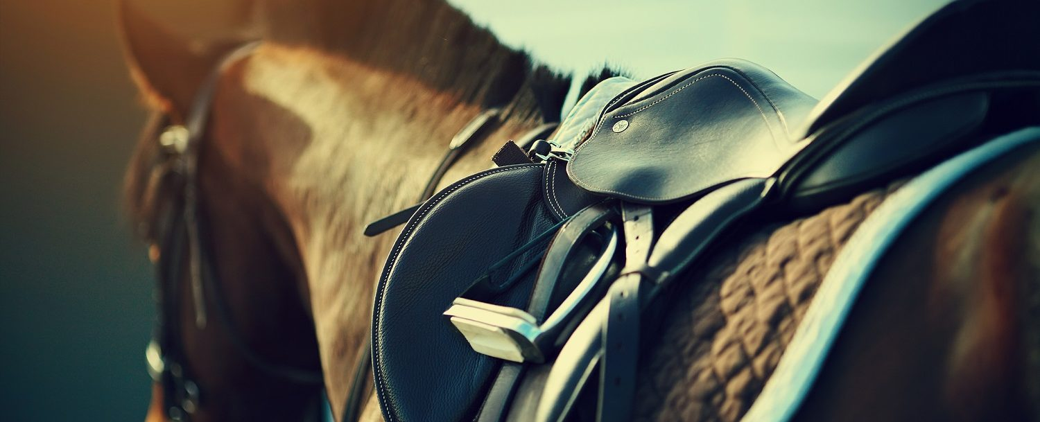 best horseback riding in poconos
