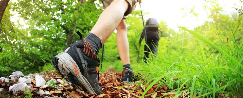 Bushkill Falls Hiking